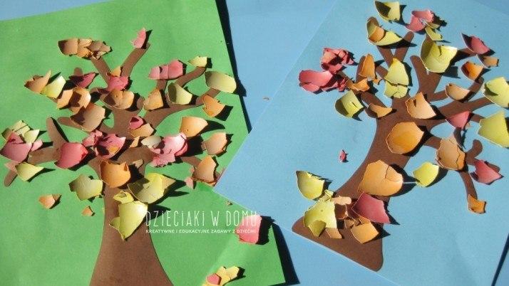Jesienne drzewa ze skorupek