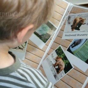 album ze zdjęciami i magnesy na lodówkę