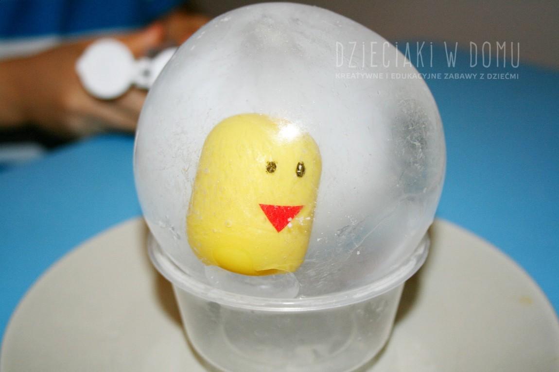 Kurczak w jajku – lodowa zabawa na upalne dni