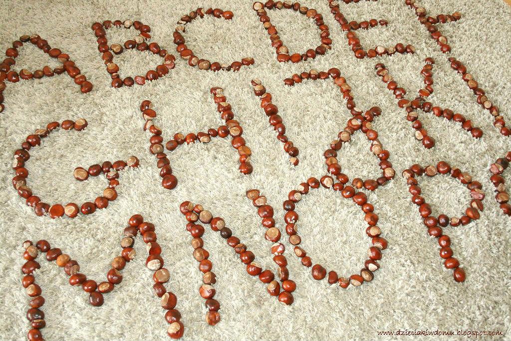 Zabawa kasztanami - układanie literek i wyrazów