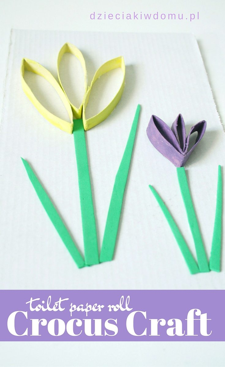 toilet paper roll crocus craft