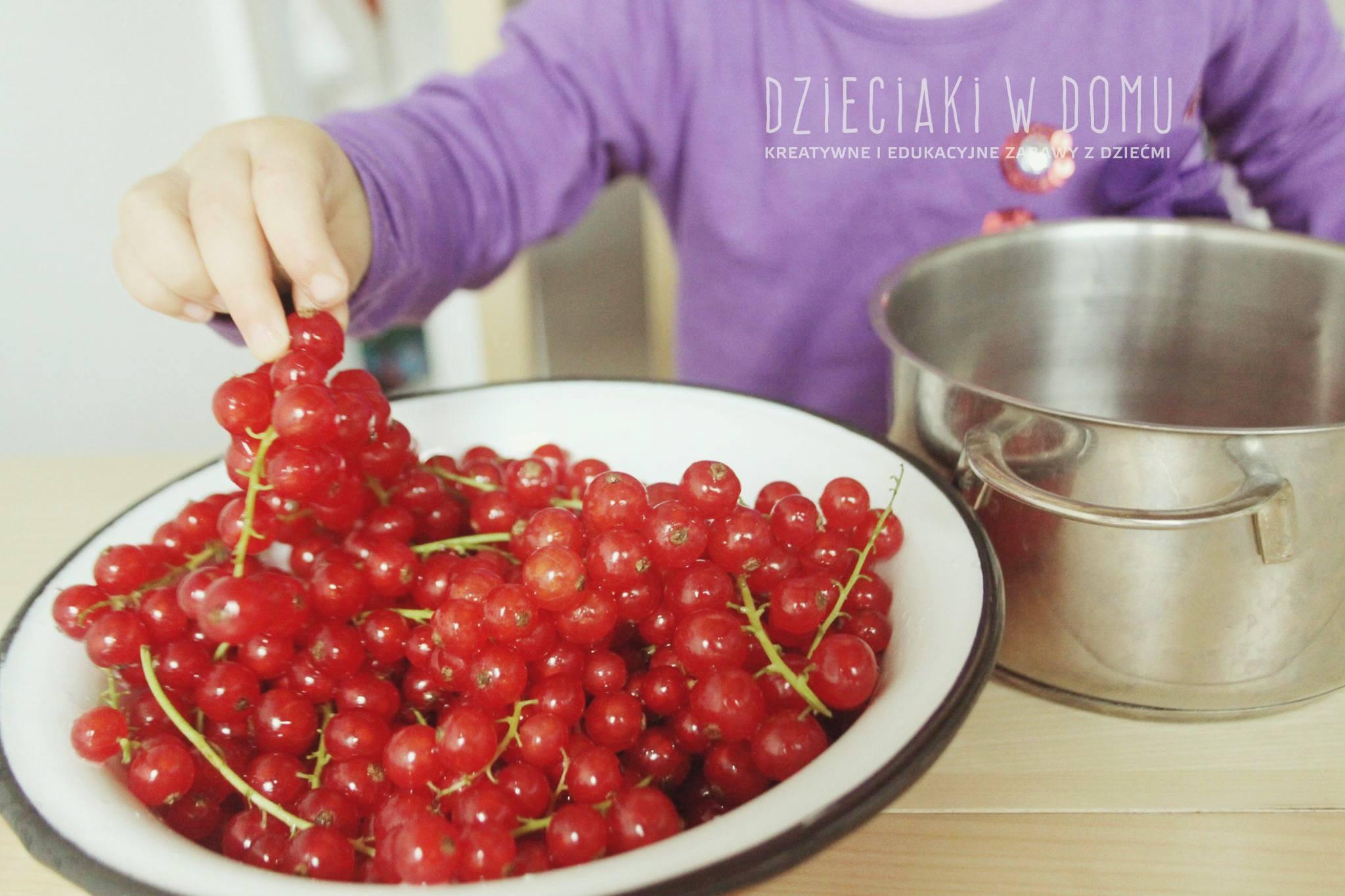 Robimy porzeczkowy kompot - wspólny czas z dzieckiem w kuchni
