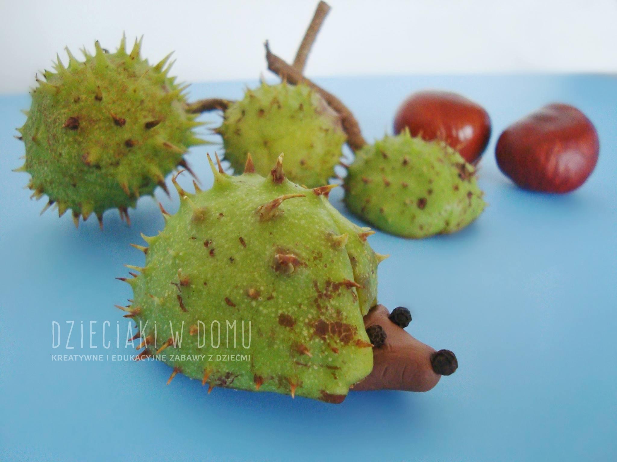 jeż z łupiny kasztana - kreatywna zabawa dla dzieci