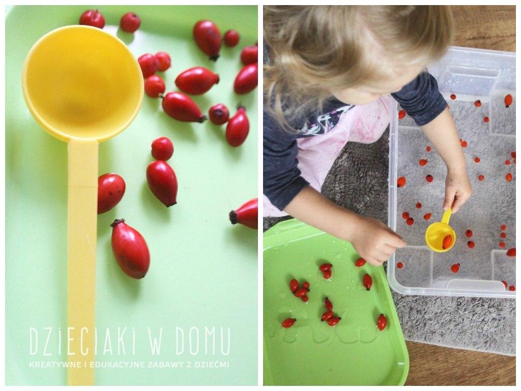 Jarzębina, dzika róża i woda... czyli doskonała, jesienna zabawa dla malucha