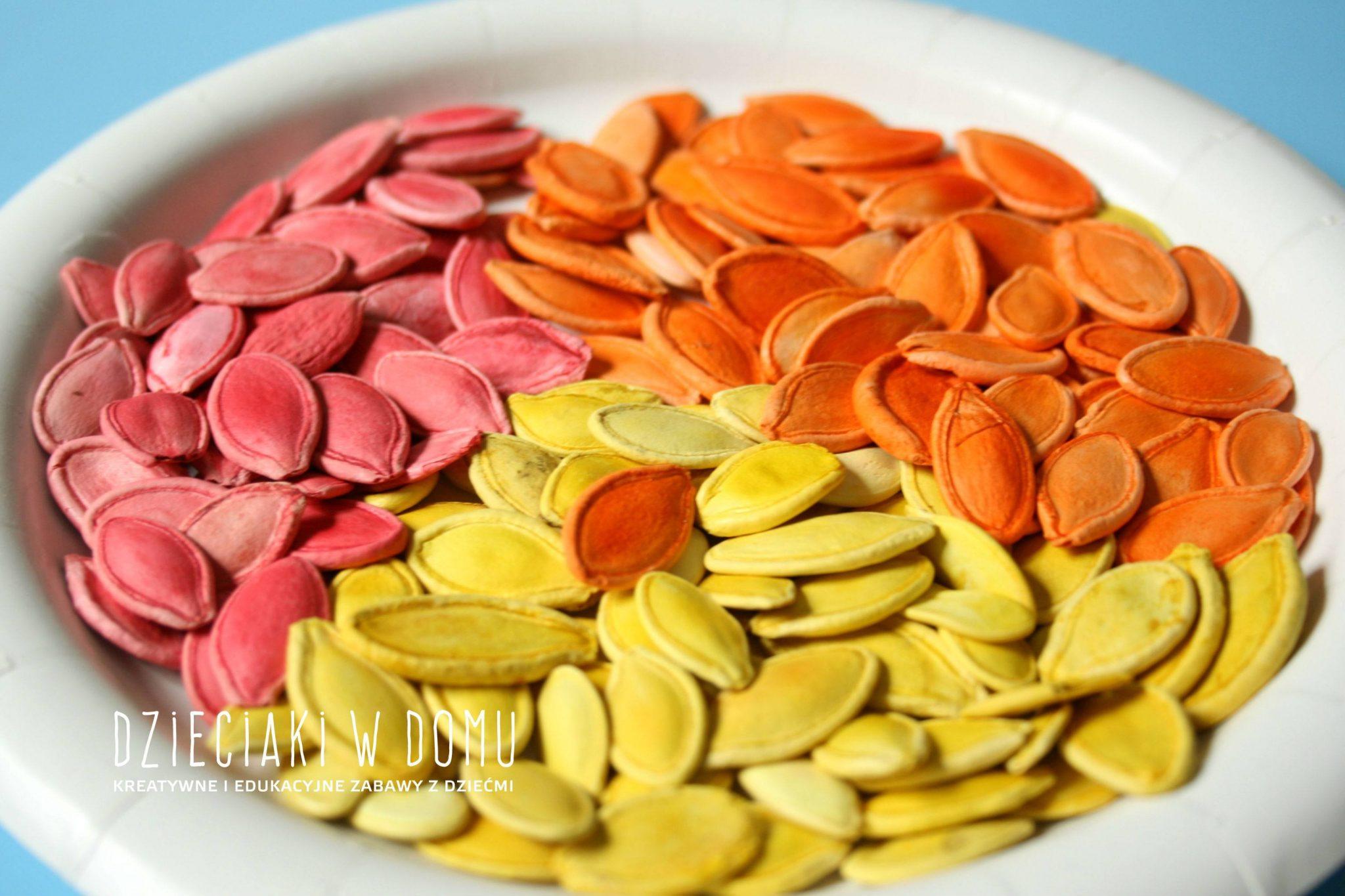 farbowane pestki dyni