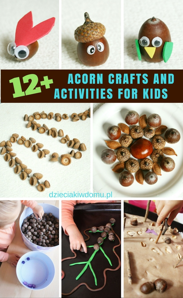 acorn-crafts-and-activities