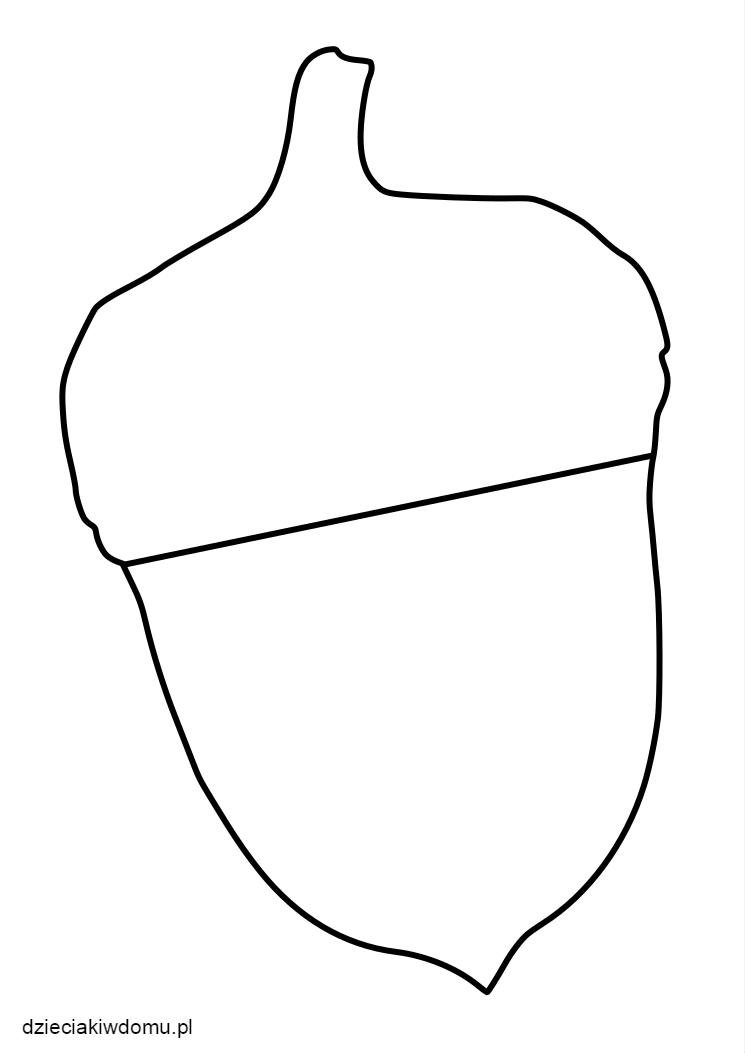 szablon żołędzia