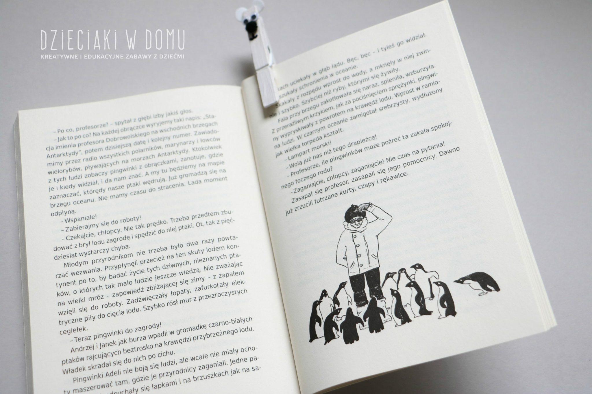 koła podbiegunowe - książki dla dzieci - arktyka i antarktyda