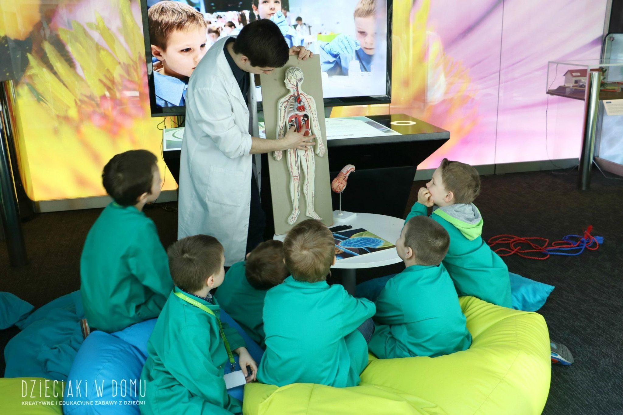 edukacyjne warsztaty dla dzieci baylab 18