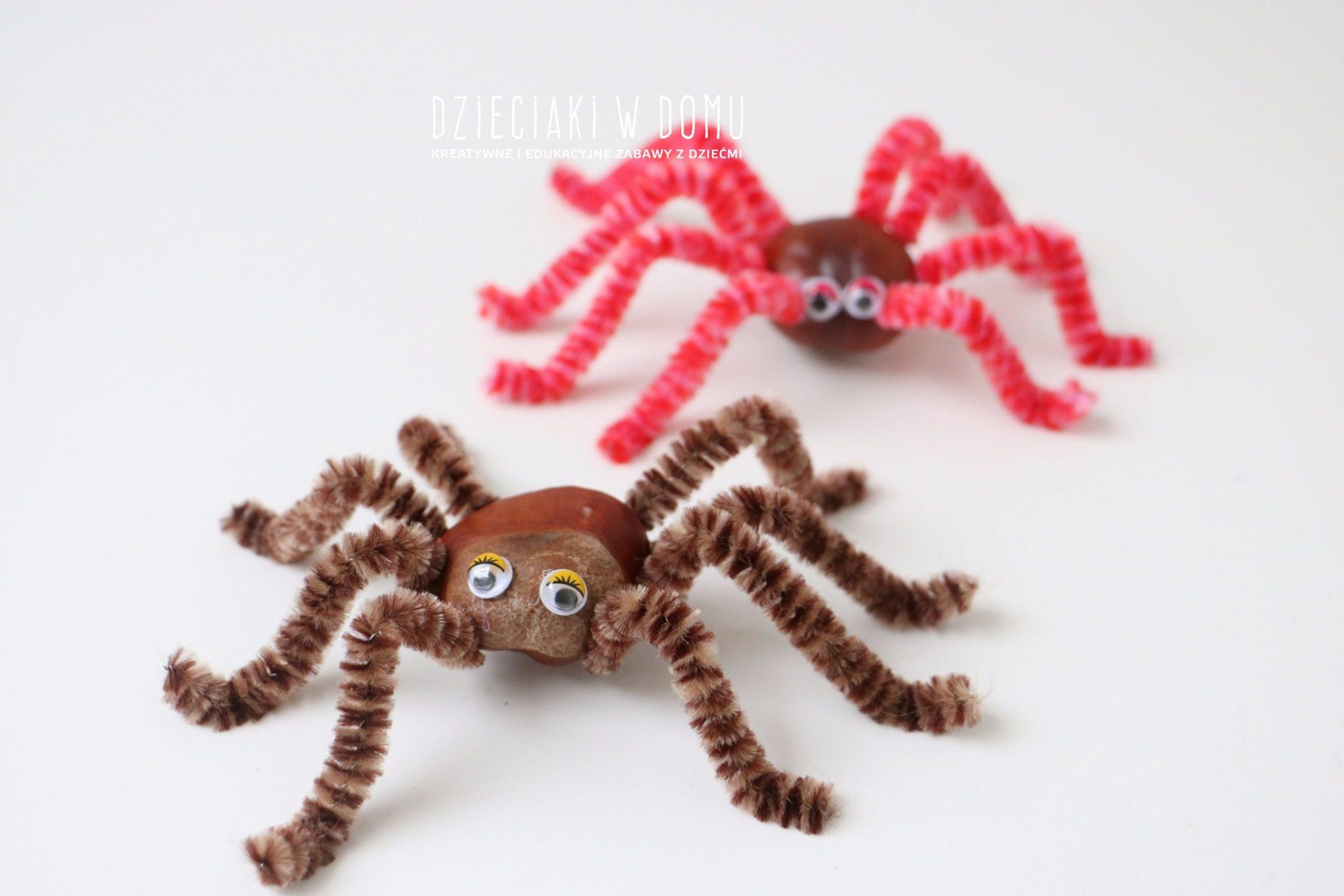 zwierzątka z kasztanów - pająk