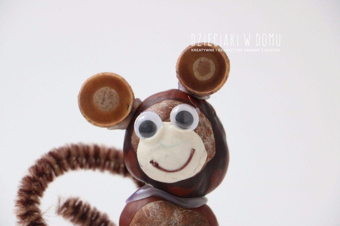 Zwierzątka z kasztanów: małpka, sowy i pająki