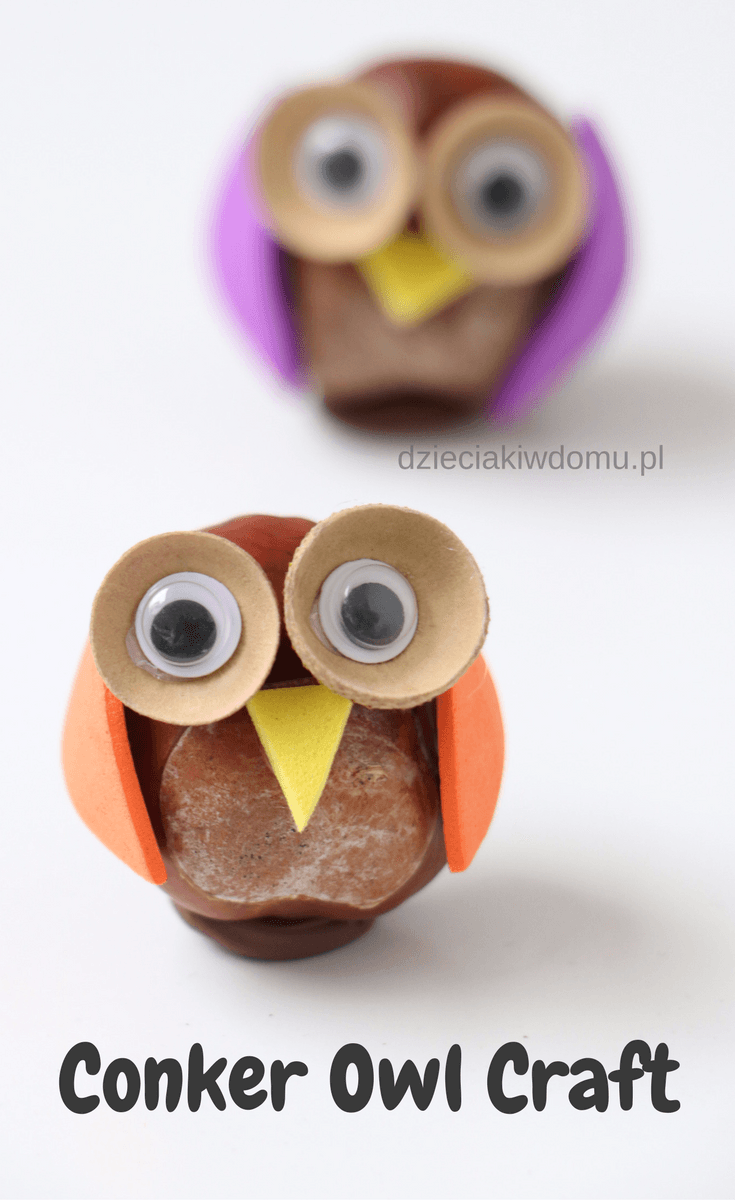 conker owl craft