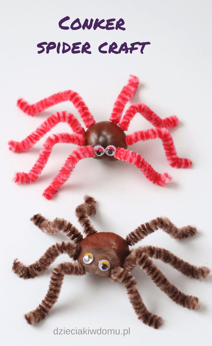 conker spider craft