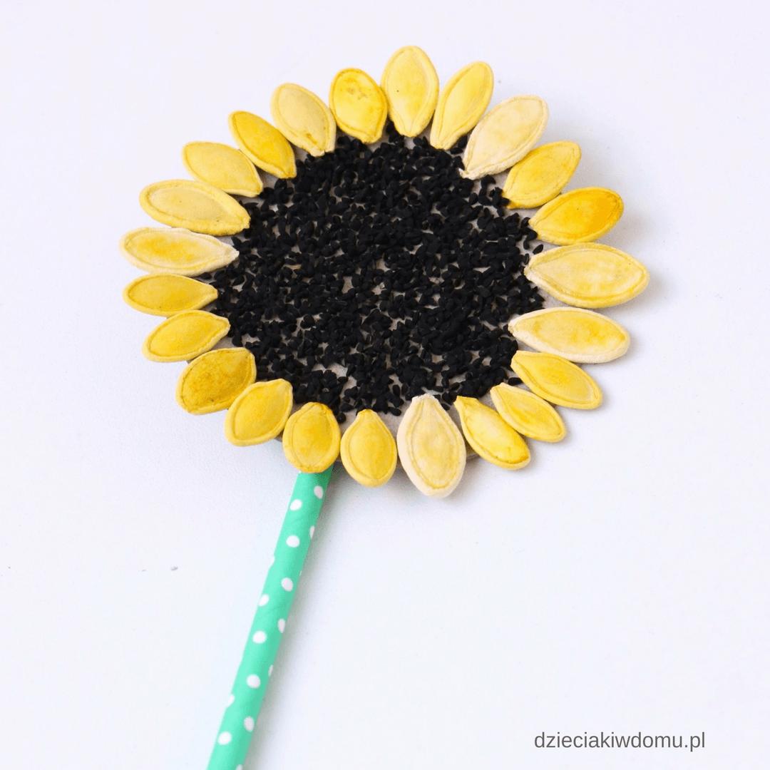 Słonecznik – praca techniczna dla dzieci