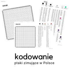 ptaki - karty pracy do kodowania shopick.pl