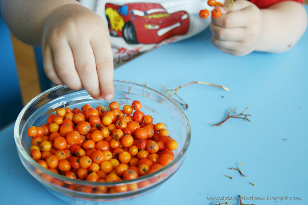 korale z jarzębiny - kreatywna zabawa dla dzieci