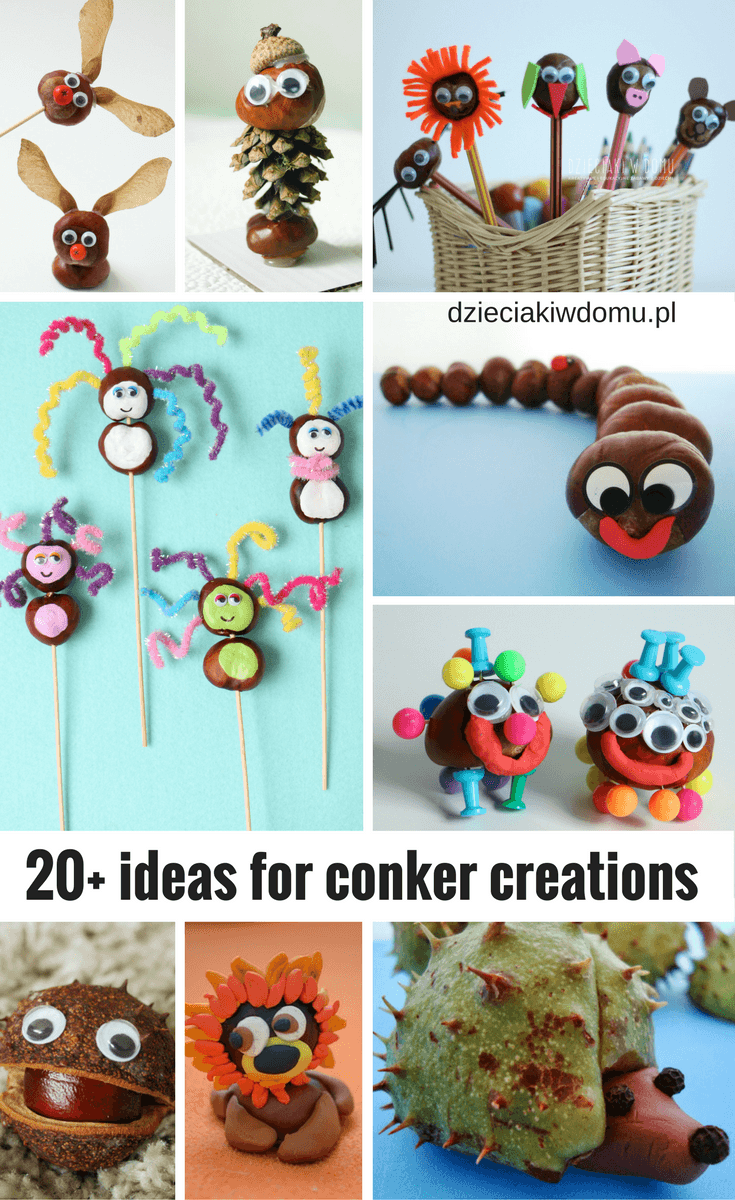 +20 conker creations
