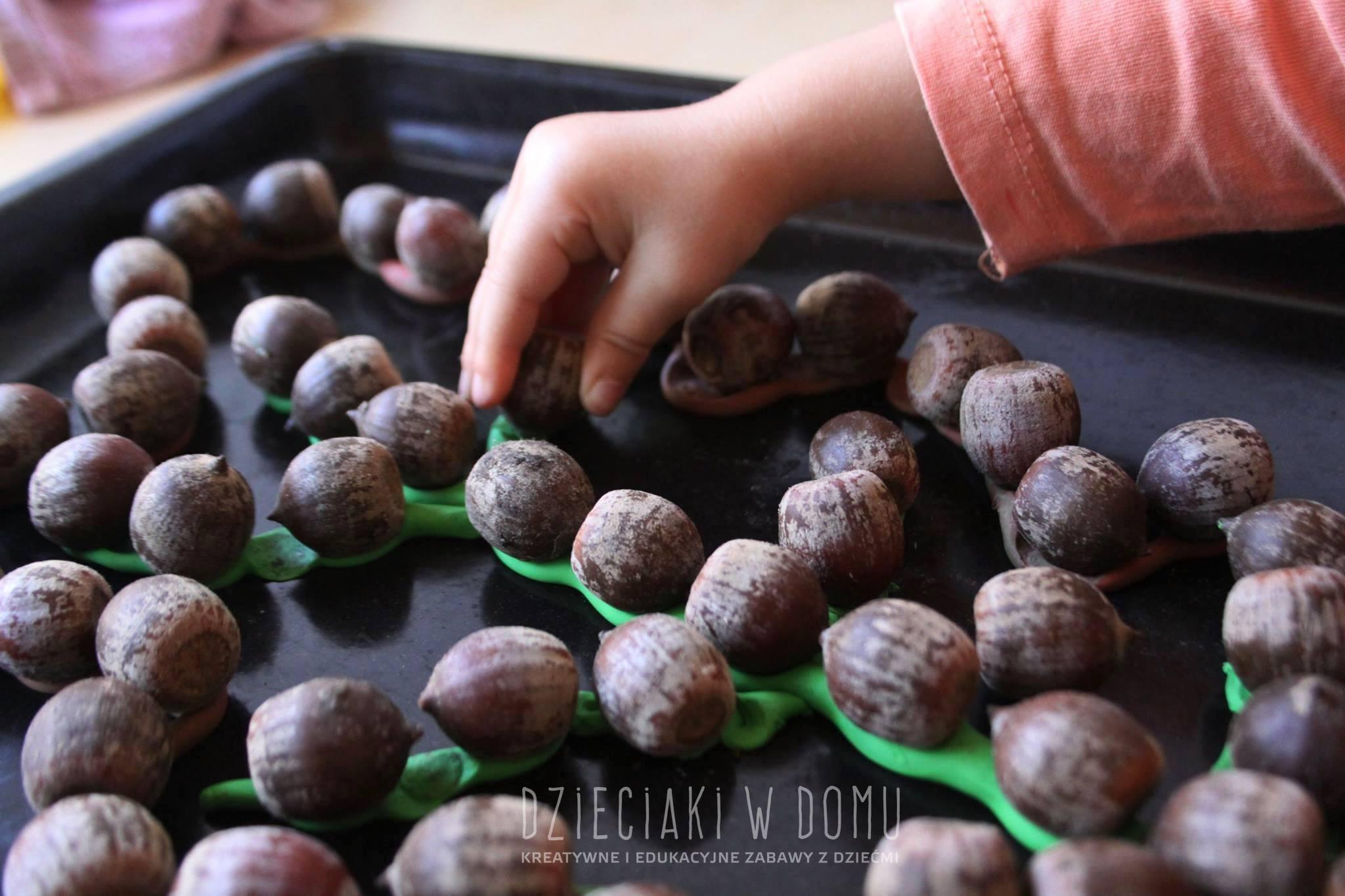 żołędzie i plastelina - jesienna wyklejanka dla dzieci