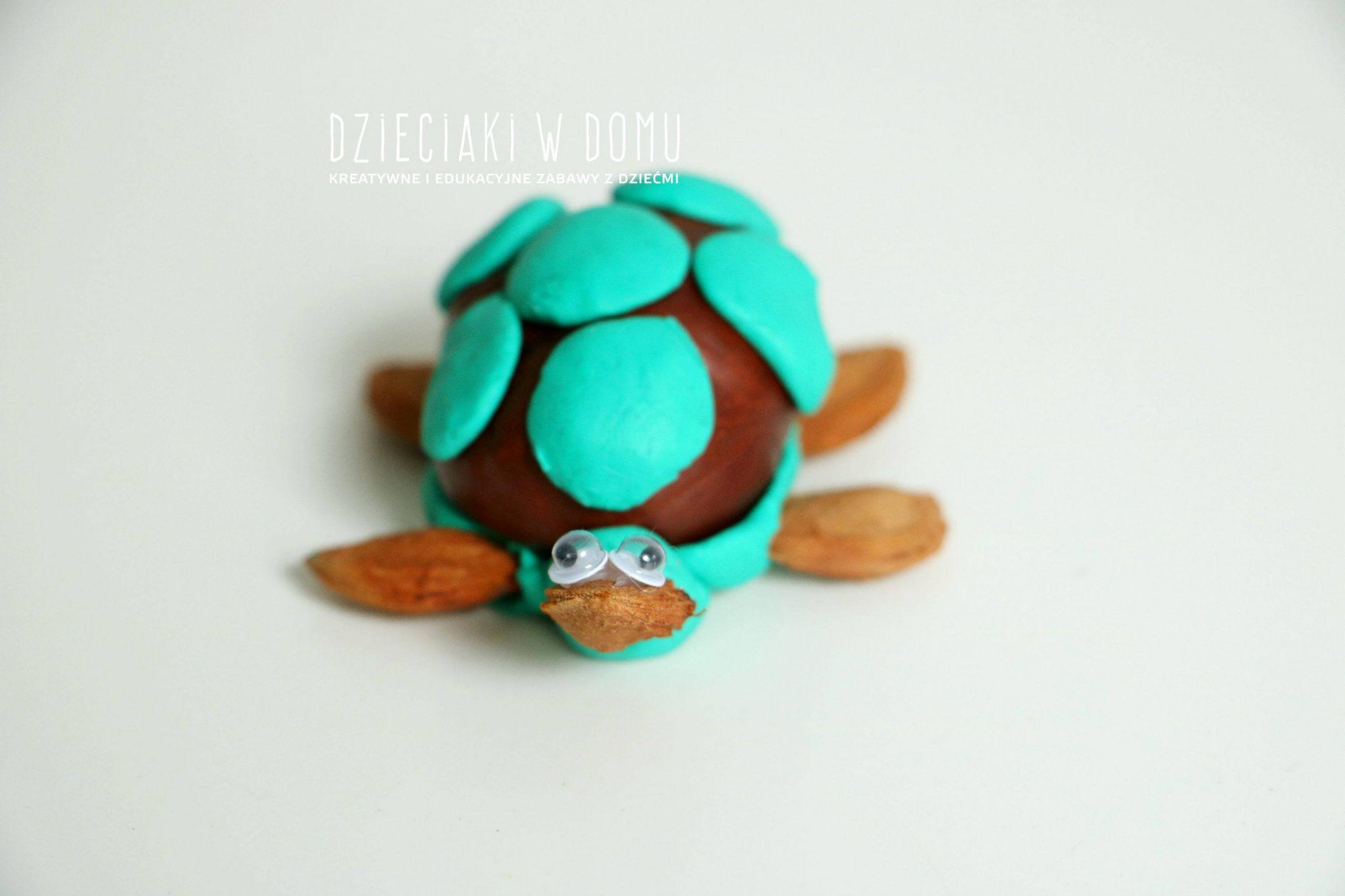kasztanowe stworzonka - żółw