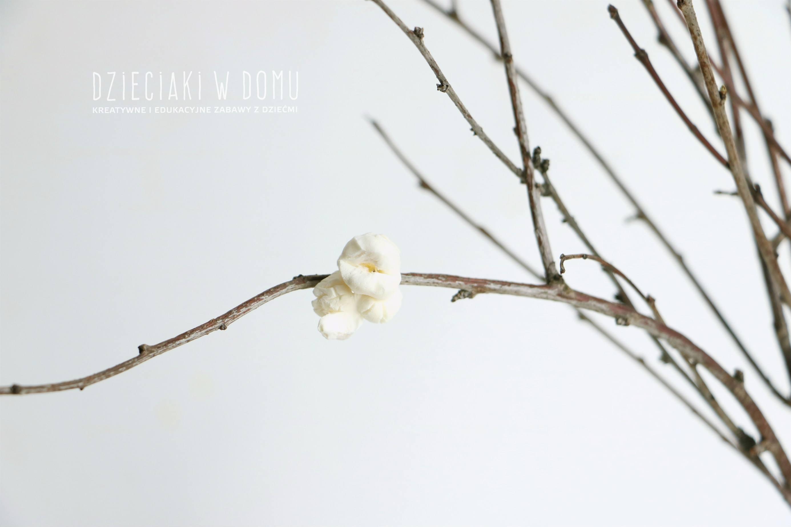 Wiosenne drzewo pełne kwiatów