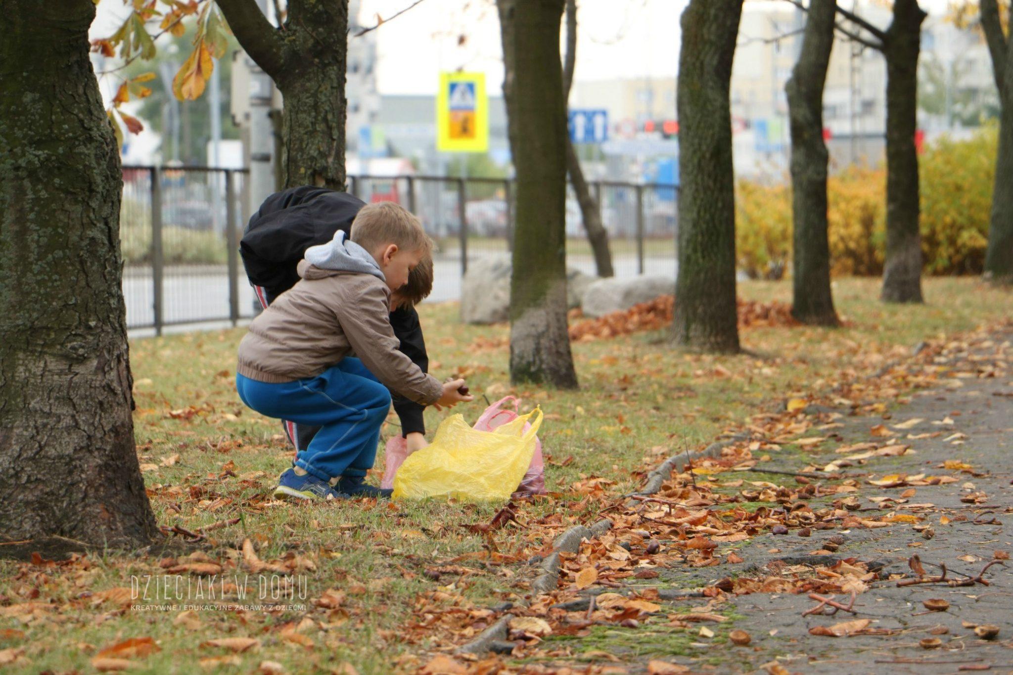 jesienne zabawy dla dzieci - zbieranie kasztanów