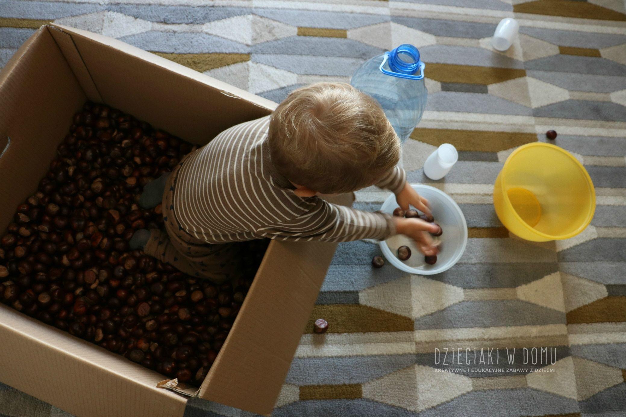 jesienne zabawy dla dzieci z kasztanami