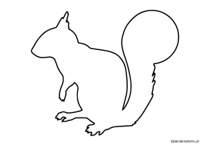 szablon wiewiórki