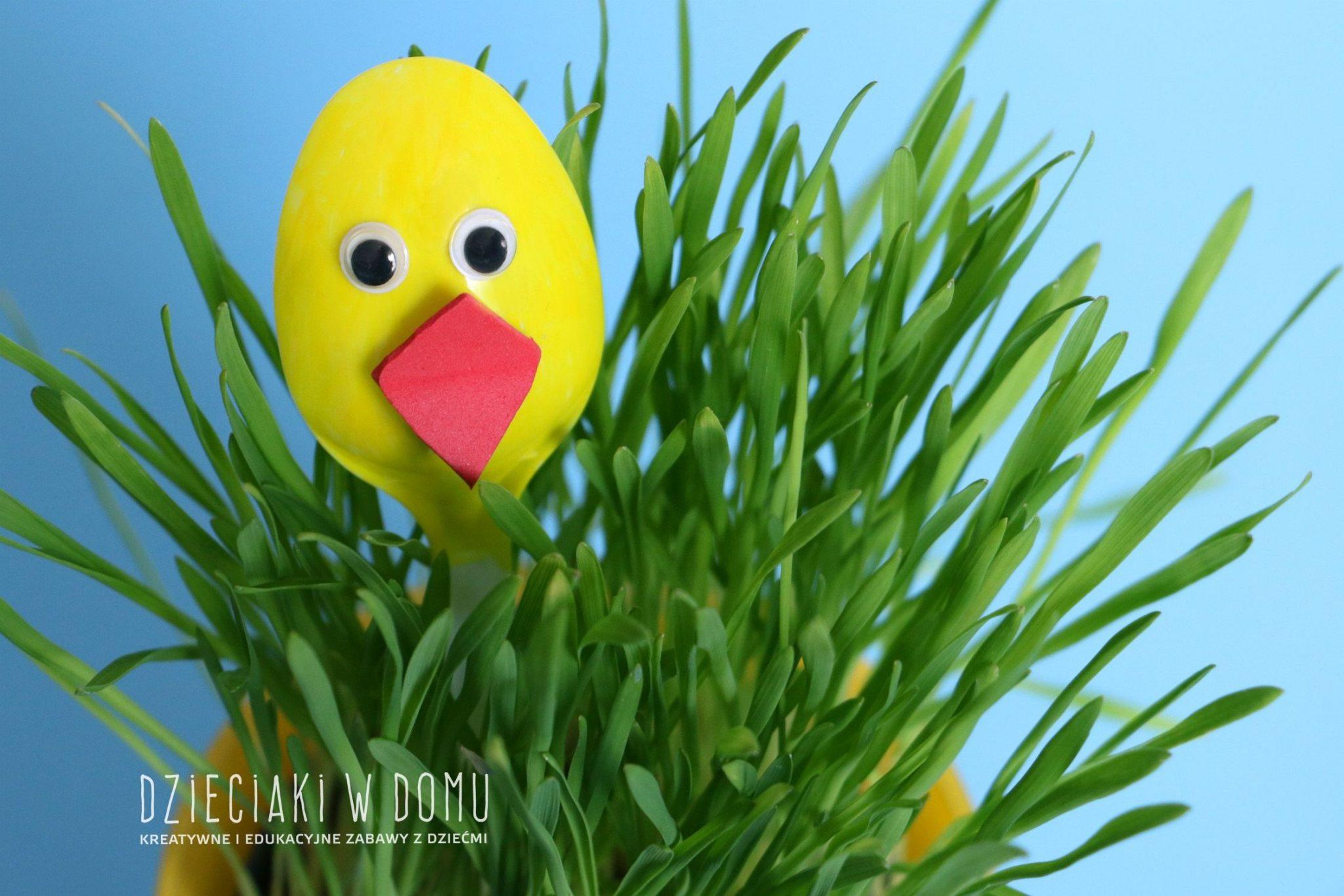 zajaczek i kurczak - dekoracja