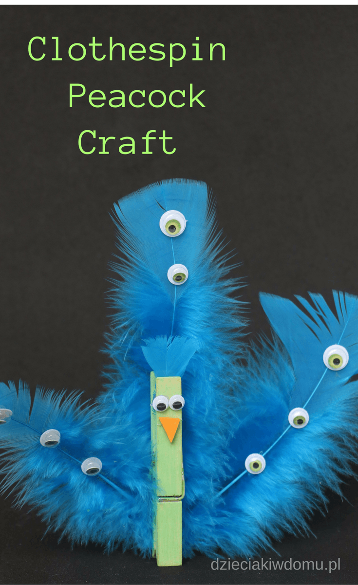 clothespin peacock craft