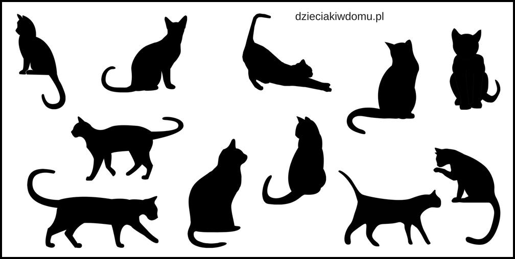 dzien kota - kot szablony